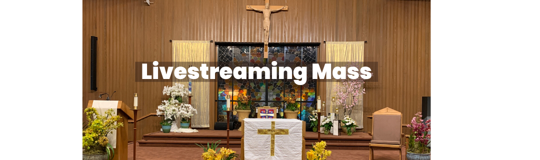 livestreaming mass