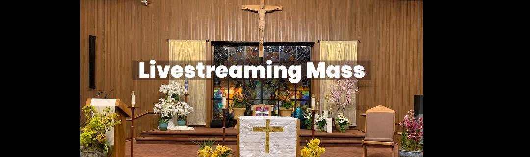 livestreaming mass